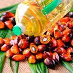Отмены льготной ставки НДС для пальмового масла
